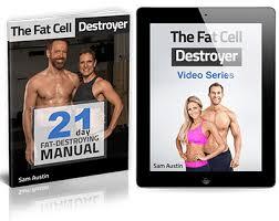 12 week fat destroyer