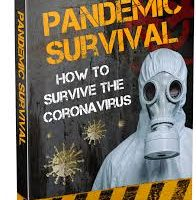 Pandemic Survival Reviews